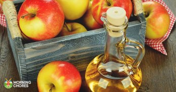 31 Awesome Uses for Apple Cider Vinegar You'll Absolutely Love