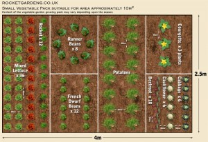 19 Vegetable Garden Plans & Layout Ideas That Will Inspire You