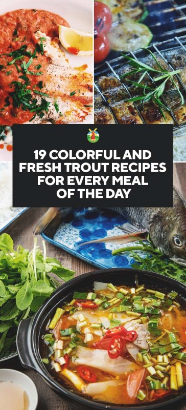 19 fresh trout recipes for every meal of the day it can be paired with a wide range of ingredients and flavors so prepare yourself to get experimenting forumfinder Images