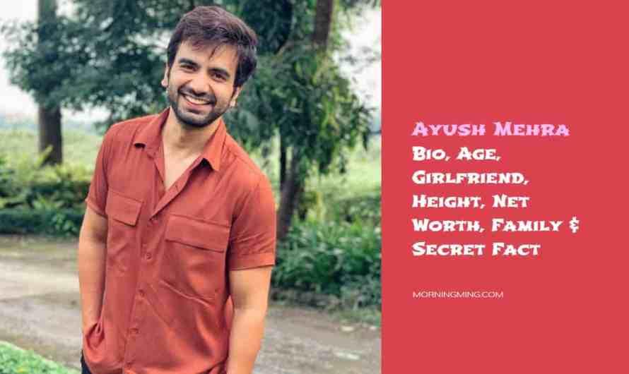 Ayush Mehra Bio, Age, Girlfriend, Height, Net Worth, Family & Secret Fact