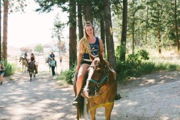 Corrie horse