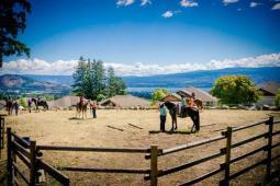 Scenic horse day