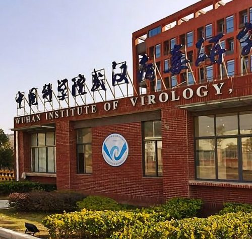 Serious Questions Remains about NIH Funding of Wuhan Lab