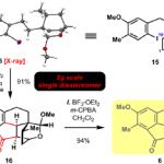 C-H官能基化を駆使した現代的全合成:Cephanolides B および C