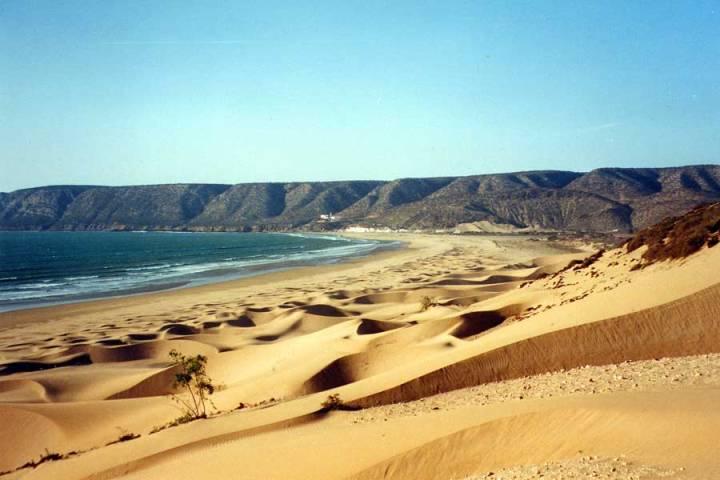 Atlantic Coast8