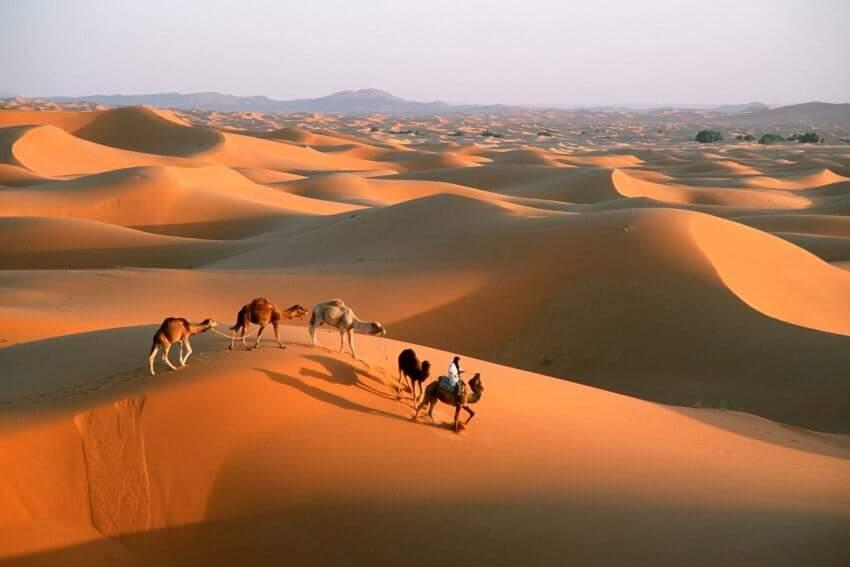 tour from marrakech 3