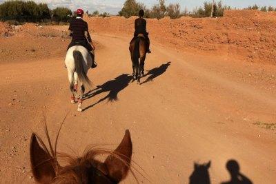 Horseback riding morocco