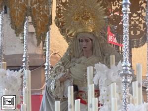 CULTOS. Función en honor de María Stma. de la Paz. 20 de enero. Iglesia de San Miguel @ Iglesia de San Miguel | Morón de la Frontera | Andalucía | España