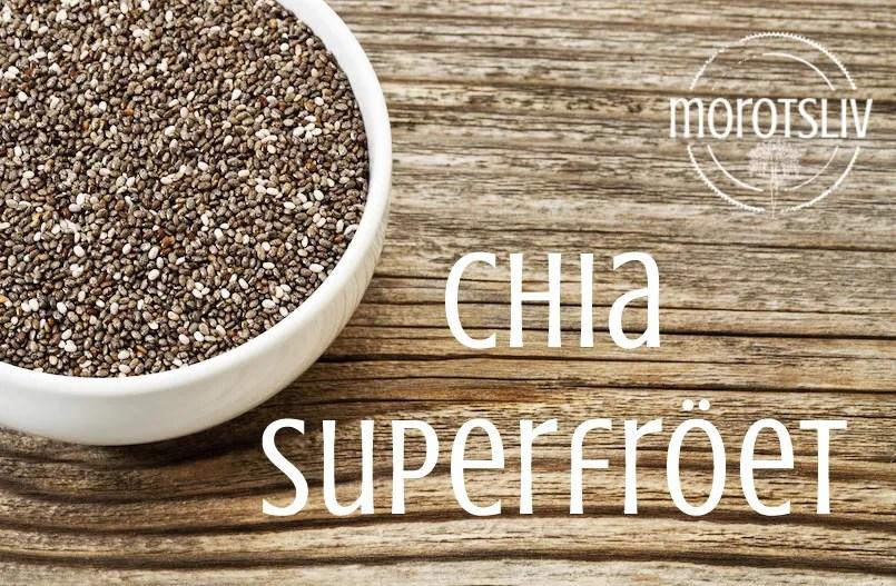 Chia – superfröet