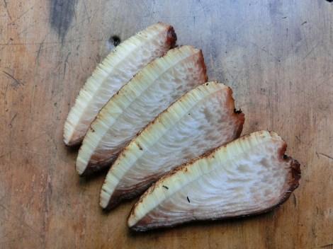 Fistulina slices
