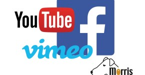 Video op facebook, youtube of vimeo