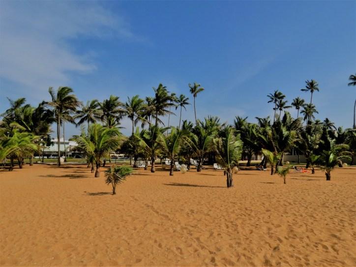 Wattala, Sri Lanka