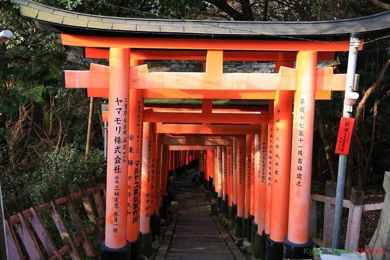 伏見稻荷神社 (53)