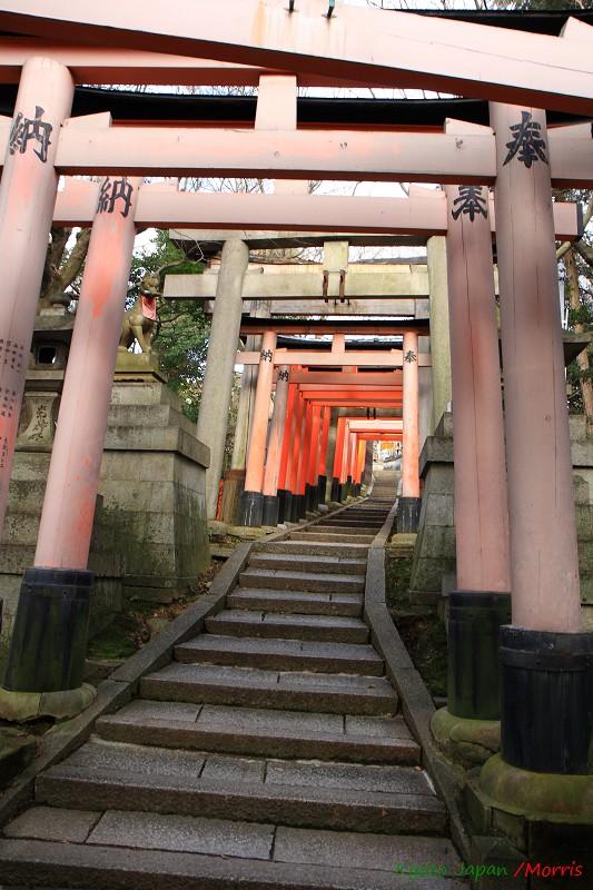 伏見稻荷神社 (45)