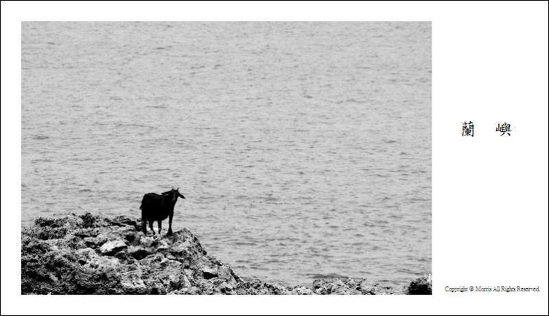 山羊的國度