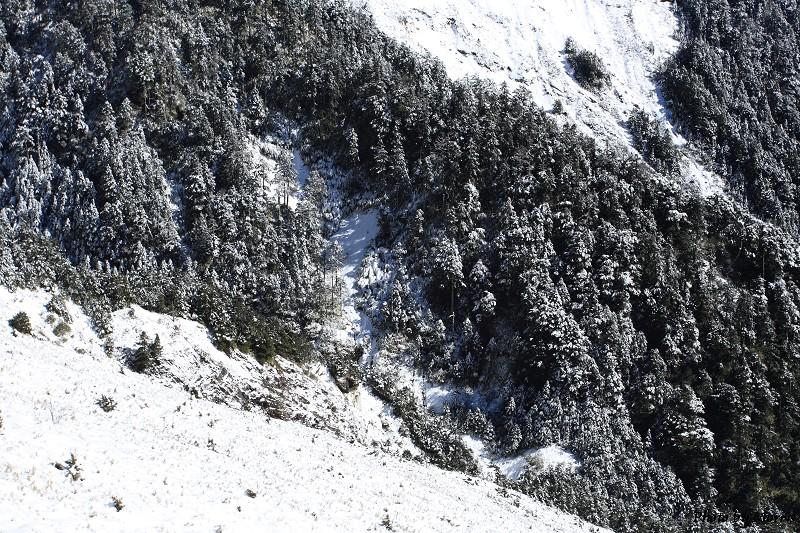 合歡山冬雪前奏曲 (61)