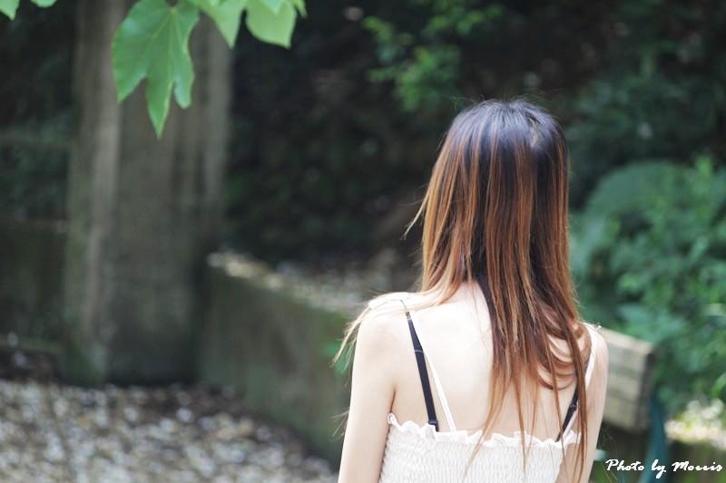 油桐花語 (39)
