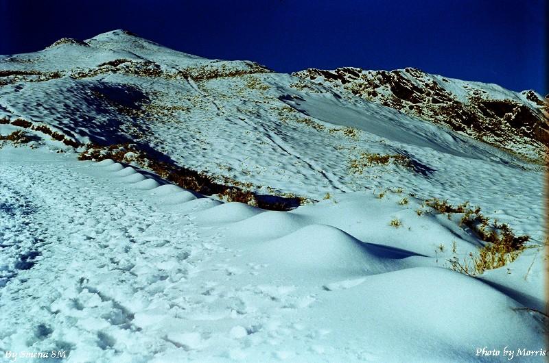 合歡山冬雪 (37)