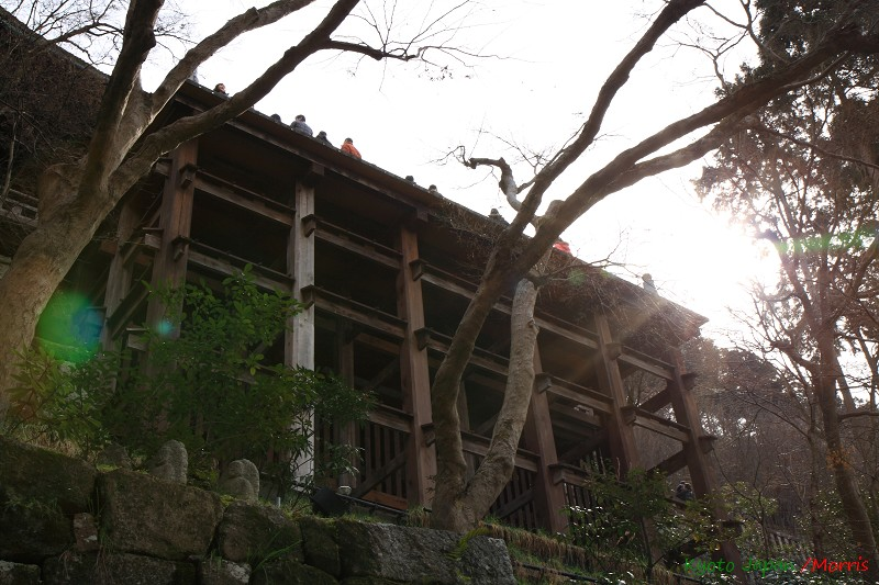 清水寺 (60)