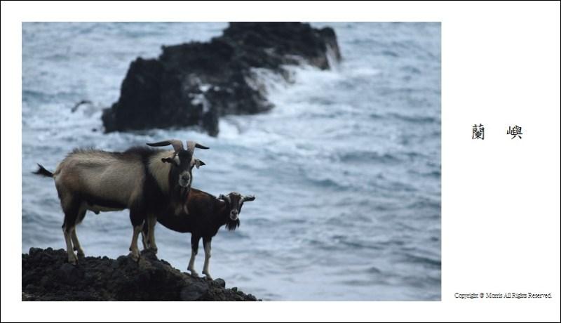 山羊的國度 (33)