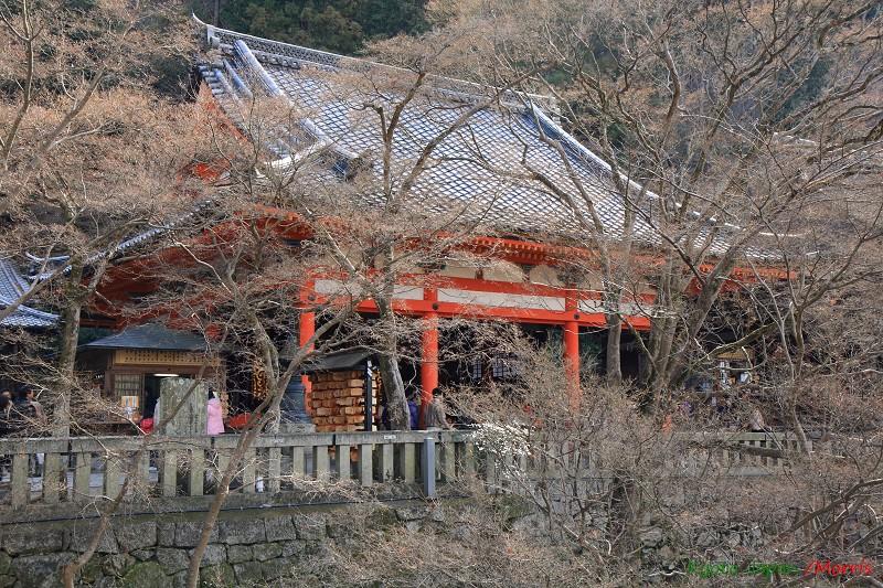 清水寺 (25)