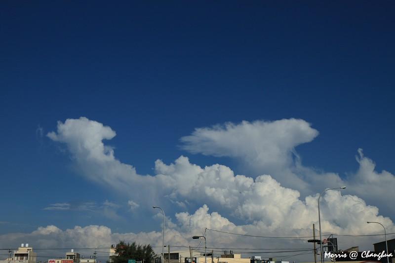 追逐那片雲