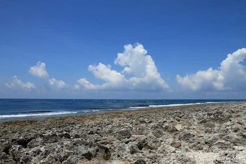 厚石群礁 (4)