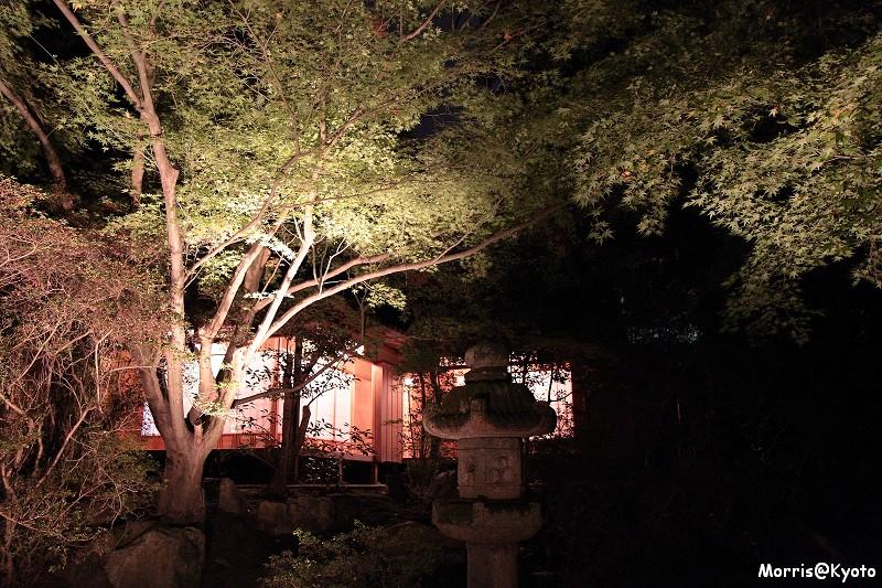 青蓮院門跡 (15)