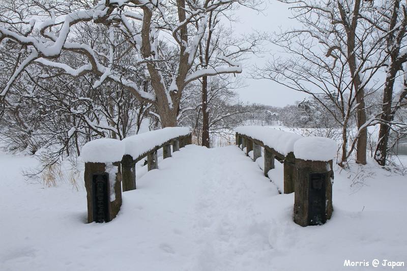 大沼公園 (59)
