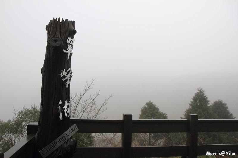 翠峰湖環山步道 (1)