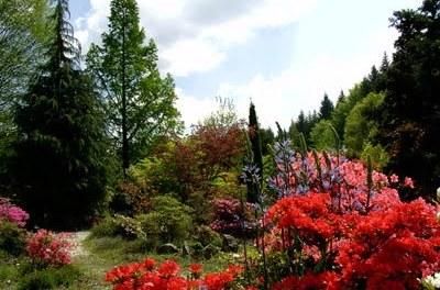 A 15 minutes de Mortagne: les Jardins de Gondremer!