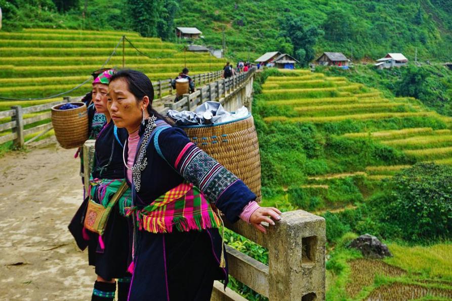 Schwarze Hmong in ihrer traditionellen Kleidung vor den Reisterrassen von Sapa