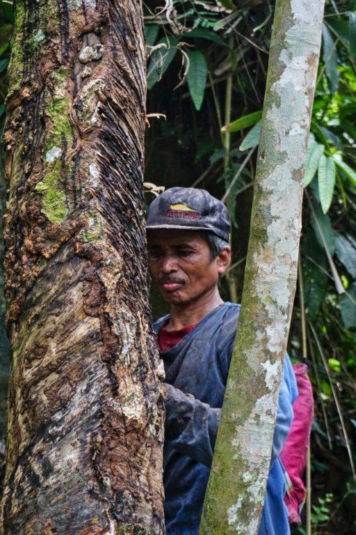 Rubberboer in Sumatra, Indonesië