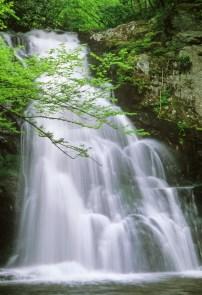 456-47 Upper Spruce Flats Falls
