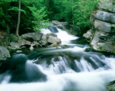 Waterfalls on The Middle Prong of the Little River flows across rocks and boulders and through a spring forest near Tremont, in Great Smoky Mountains National Park in Tennessee
