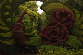 Floral display in Shanghai Park