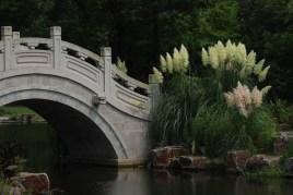 Shanghai Botanical Gardens