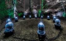 kmccanless-1 Illumination Project