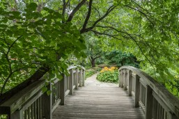 Take the path