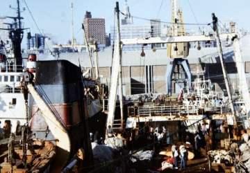Bosman i Just morskie psy- dwie różne historie dwóch wielkich przyjaciół marynarzy.