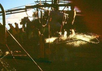 Męskie Dowcipy w rybackim wykonaniu Wracamy i to gazem!