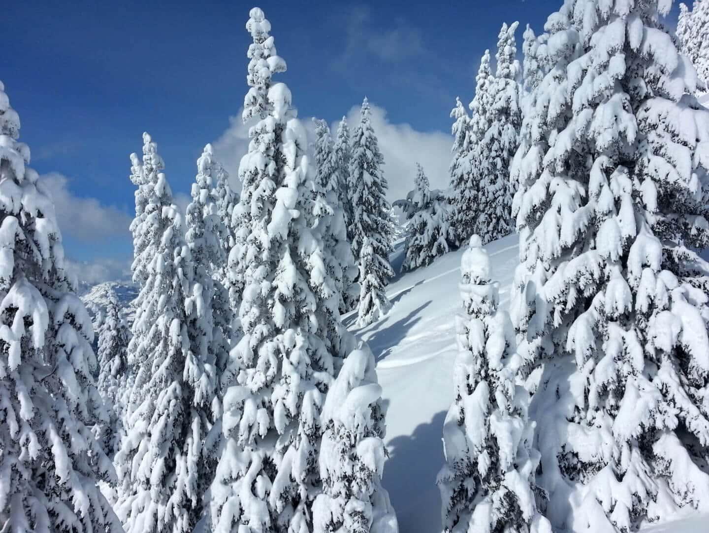 Adrenaline Morzine Ski School ski lesson in Morzine Avoriaz Les
