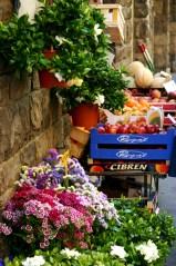 Italian Grocery