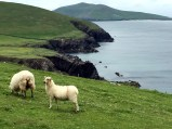 Ireland Travel