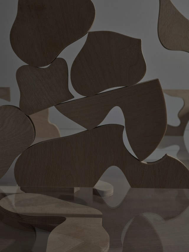 Monotone photograph of wooden abstract puzzle, the pieces representing the adaptability of language, by Gemma Tickle and Michael Bodiam