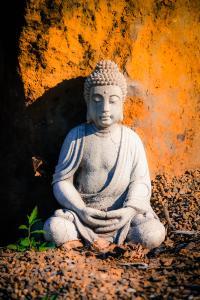gratitude, buddha
