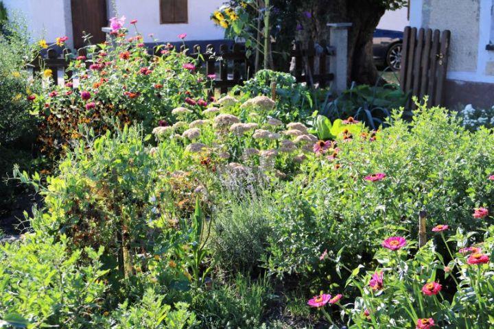 Zu Besuch in fremden Gärten: Bei Hilde in Kirchdorf/Inn