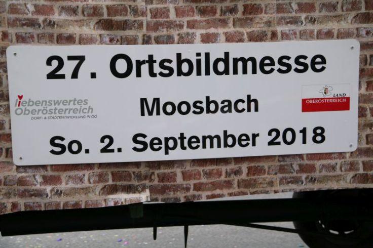 2018 02 mosauerin faschingsumzug mauerkirchen.jpg
