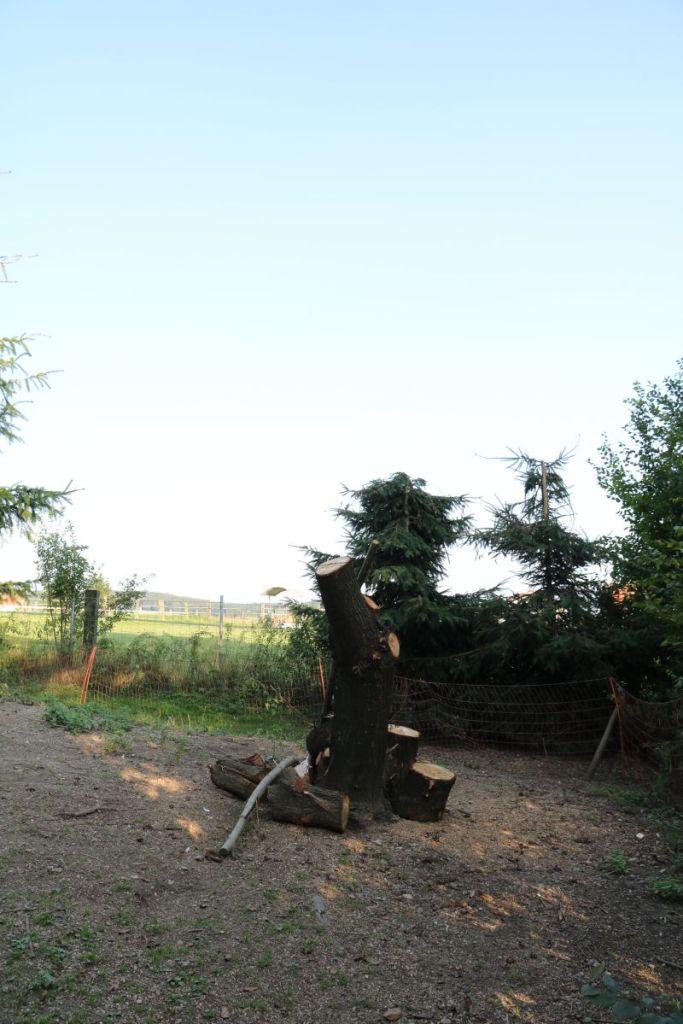 mosauerin innviertel hofrundgang august