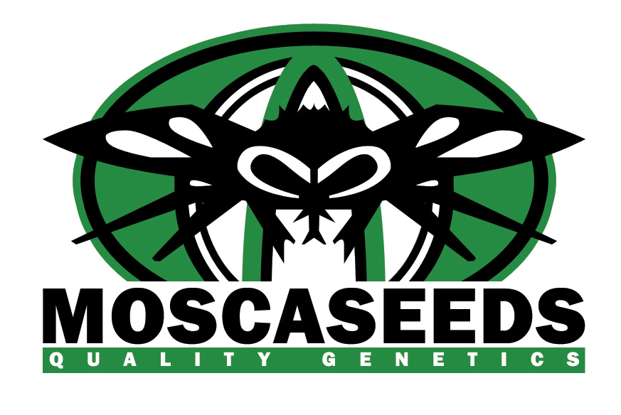 Welcome to Mosca Seeds